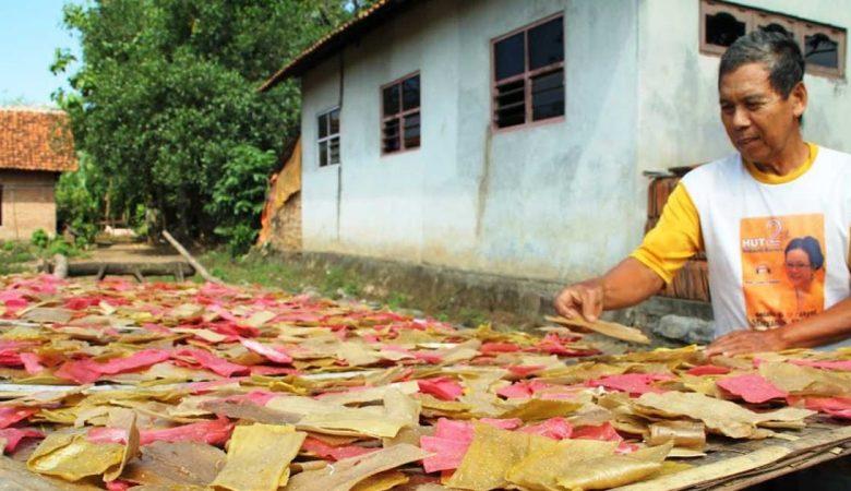 Peluang Usaha Rumahan di Desa yang Menguntungkan & Menjanjikan