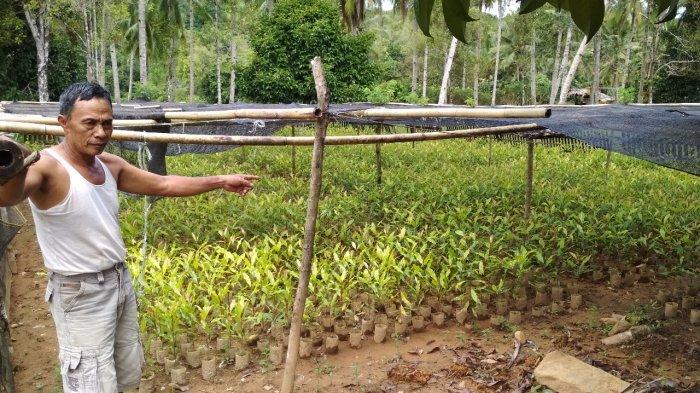 Peluang Usaha di Desa atau Kampung yang Menjanjikan